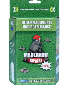 Maulwurf Express