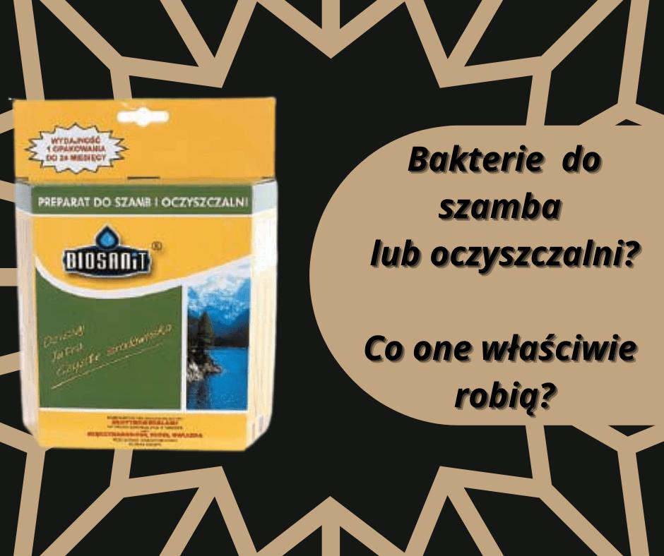 Bakterie do szamb i oczyszczalni. Po właściwie nam one?
